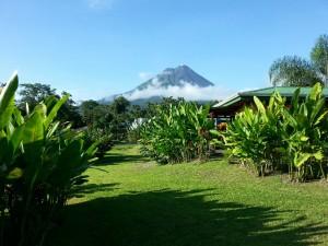 cvolcano
