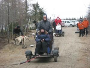 dog sledding1
